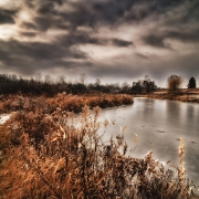 Allegan Pond